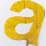 Falling-Leaves-Typography-1