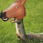 Horse head squirrel feeder on the grass
